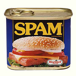spam blog comments