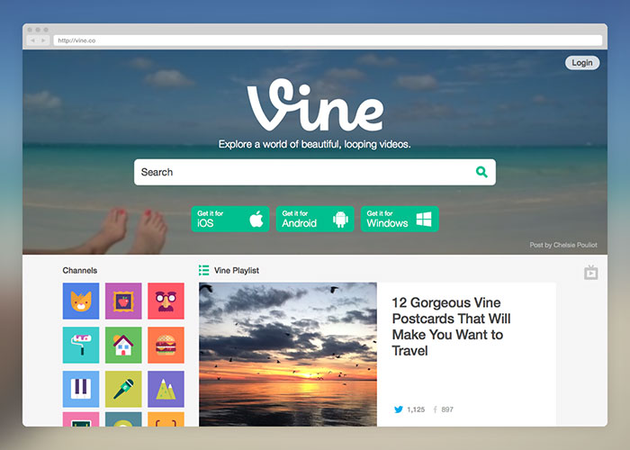 Vine on Desktop