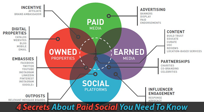 paid social media advertising vpdm st. catharines