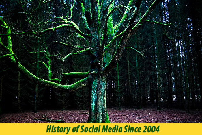 when was social media first introduced
