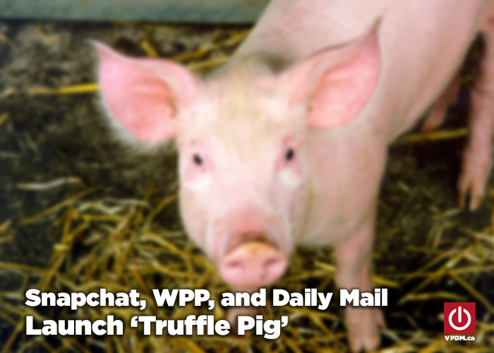 Digital content strategy with Snapchat and Truffle Pig