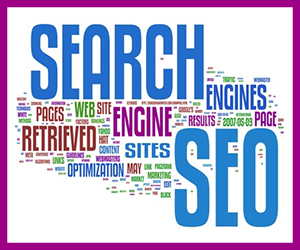VPDM Digital Marketing St.Catharines Search SEO