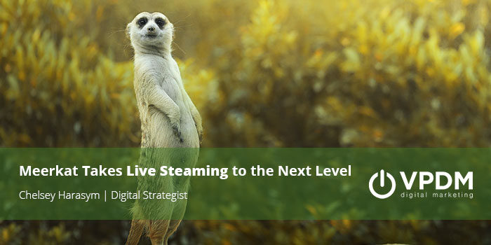 Video marketing strategies with Meerkat and Periscope