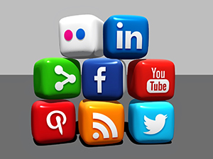 Social Media Icons Social Marketing Skills - VPDM Digital Marketing Niagara 2015