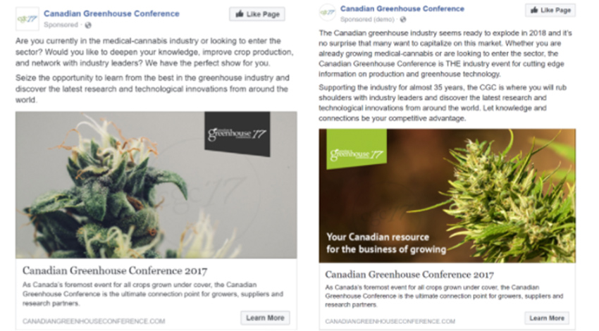 Advertising medical cannabis on Facebook